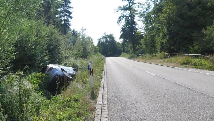Das Auto des 77-Jährigen landete im Strassengraben.