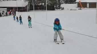 Skifahrer kommen in Dietikon voll auf ihre Kosten.