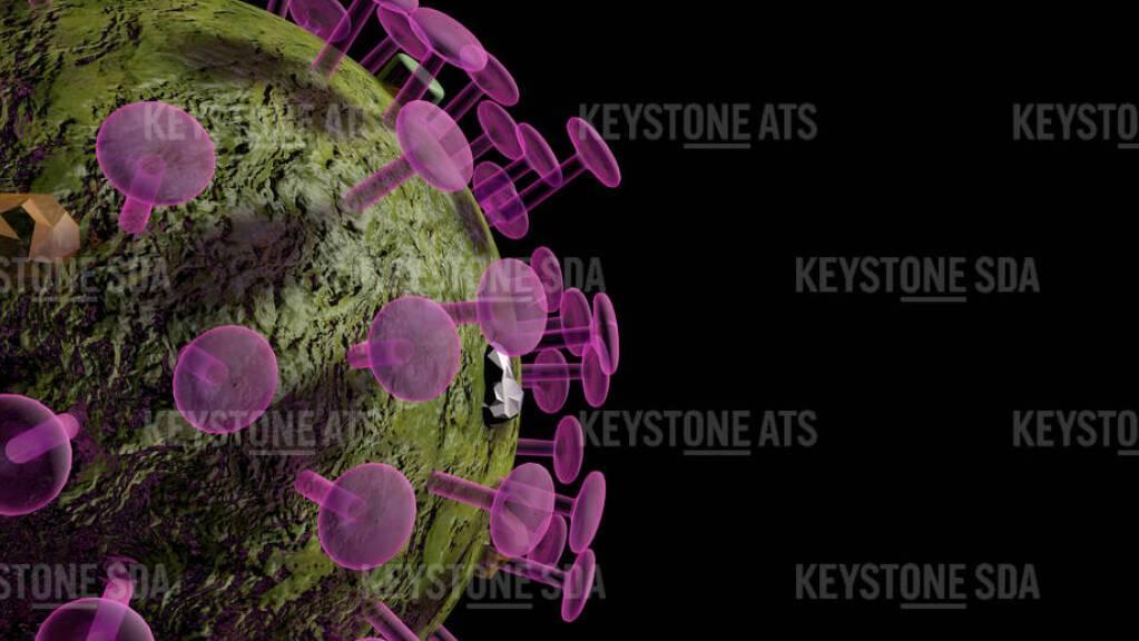 In der Schweiz und in Liechtenstein sind dem Bundesamt für Gesundheit (BAG) am Mittwoch innerhalb von 24 Stunden 5086 neue Coronavirus-Ansteckungen gemeldet worden. Gleichzeitig registrierte das BAG 87 neue Todesfälle und 190 Spitaleinweisungen.