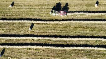Schweizer Bauern sollen in den nächsten Jahren gleich viel Geld erhalten wie heute. Das schlägt der Bundesrat vor.