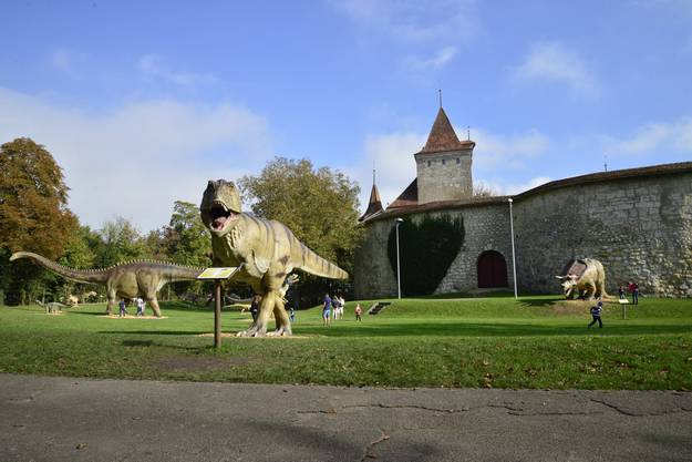 Ungewohnte Szenerie hinter dem Schloss Nidau