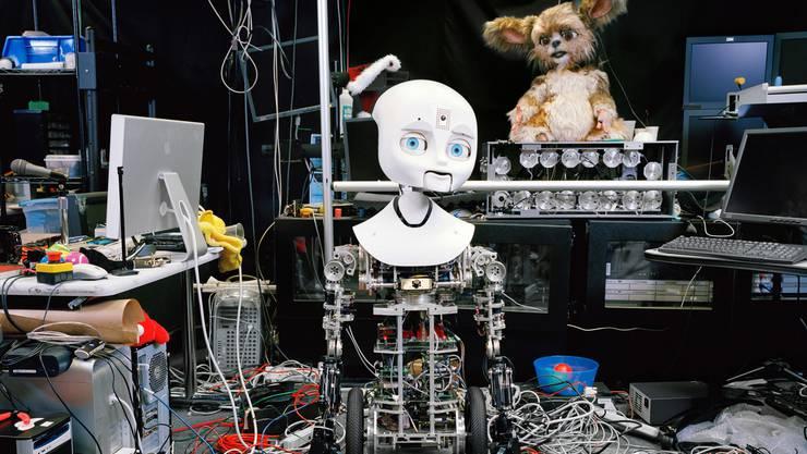 Als unser Abbild kreiert: Der Fotograf Yves Gellie hat sich in Labors für humanoide Roboter umgesehen.