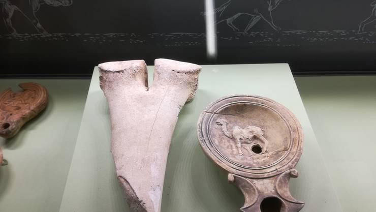 Am Römertag 2018 gibt's unter anderem einen Kamelknochen und Original-Dokumente im Vindonissa Museum in Brugg zu sehen.