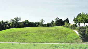 Diese Wiese im Landwirtschaftsland, vom Weg bis zum Gehölz im Hintergrund (Bild), kauften drei Private, die es als Selbstbewirtschafter nutzen wollen