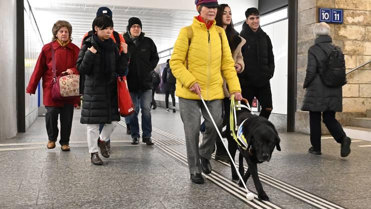 Mit einem Dankesanlass hat die kantonale Fachstelle Sehbehinderung Fokus-plus gestern Abend die neuen weiss aufgespritzten taktil-visuellen Leitlinien in der Oltner Martin-Disteli-Bahnhofsunterfühung eingeweiht.
