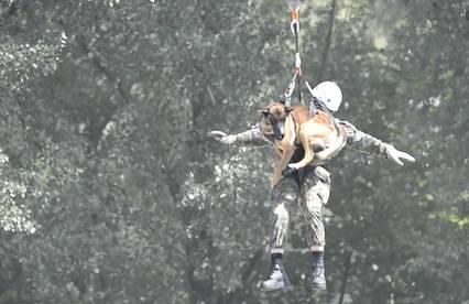 Ein Rettungshund muss mit allen Wassern gewaschen sein. Zum Beispiel für den Fall, dass er aus einem Helikopter abgeseilt wird.