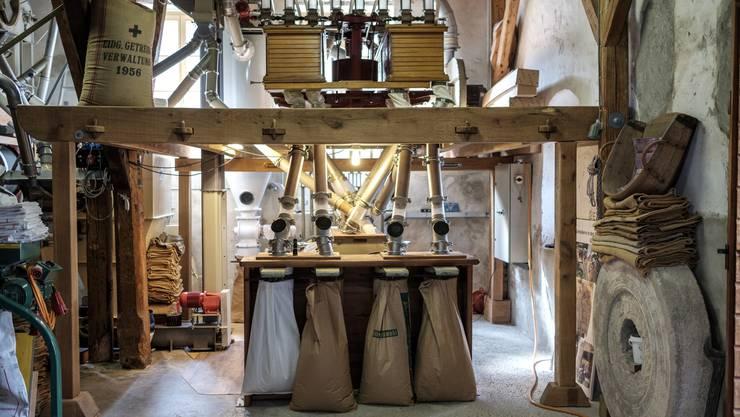 So sieht der Mahlautomat in der Schlossmühle aus, pro Stunde können 120 bis 140 Kilogramm Getreide zu Mehl verarbeitet werden.
