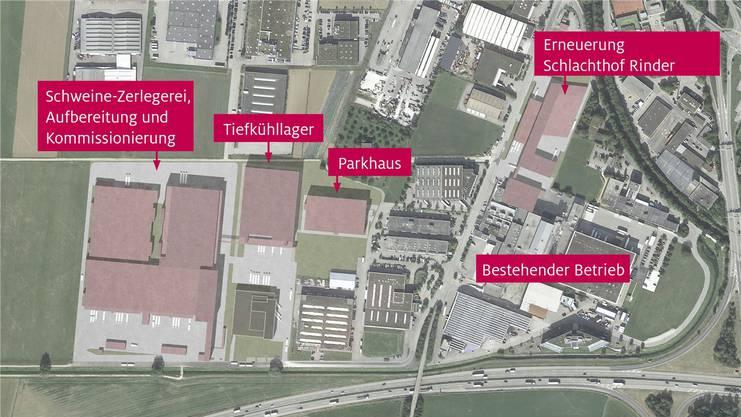 Der Fleischverarbeiter Bell präsentiert die Pläne für das Ausbauprojekt Oensingen.