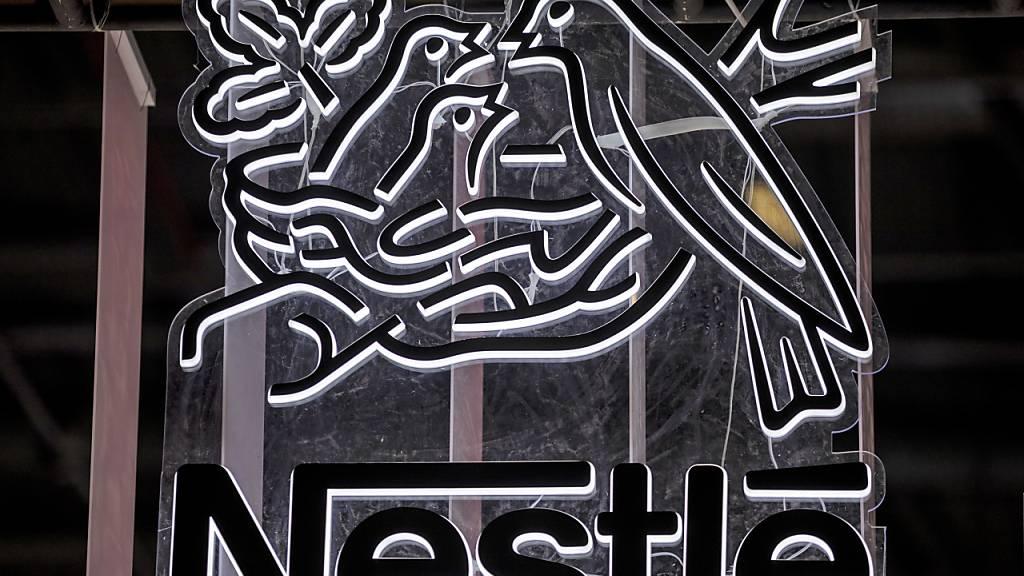 Nestlé lanciert allergenereduzierendes Katzenfutter