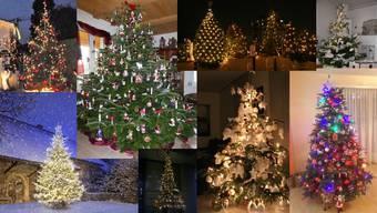 Aargauer Weihnachtsbäume der AZ-Leserschaft (Archiv)