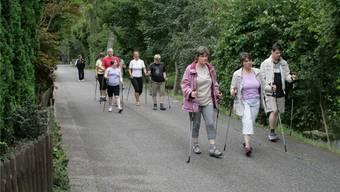 Ein gut besuchtes Angebot von Insieme Freiamt ist das Nordic Walking. az (archiv)