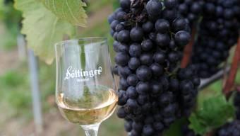 Zum Abschluss der 12. Etappe wartet eine Weindegustation in Döttingen auf die durstigen Leserwanderinnen und -wanderer.