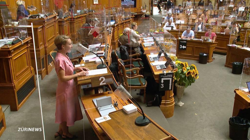 Gegenvorschlag zur Transparenzinitiative fällt im Nationalrat durch