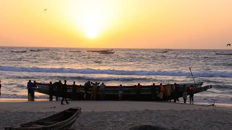 Das Projekt Guinea 2012 ist mit dieser Reise nicht abgeschlossen.