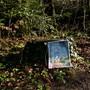 Auf humorvolle Weise will der Wald-Knigge die Regeln aufzeigen. Verena Schmidtke