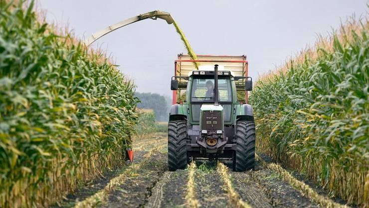 Schweizer Landwirtschaft soll umweltfreundlicher werden, findet der Bundesrat.