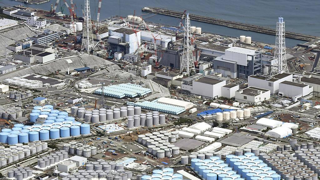 Japan erwägt Entsorgung von radioaktivem Wasser ins Meer