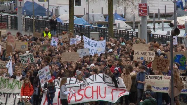 Hunderte Schüler demonstrieren gegen Klimawandel