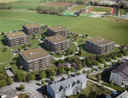 Stein bietet vier Areale an – drei davon befinden sich im Gebiet «Neumatt». Archiv