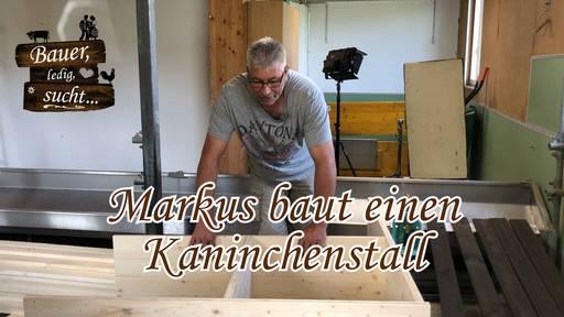 DIY Kaninchenstall - Markus weiss, wie's geht!