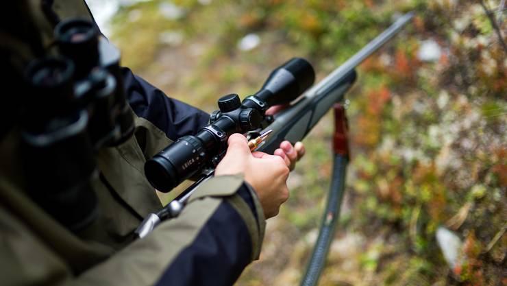 Vertrauen in die Milizjagd: Das Volk im Kanton Zürich will nichts wissen von professionellen Wildhütern wie im Kanton Genf. (Symbolbild)