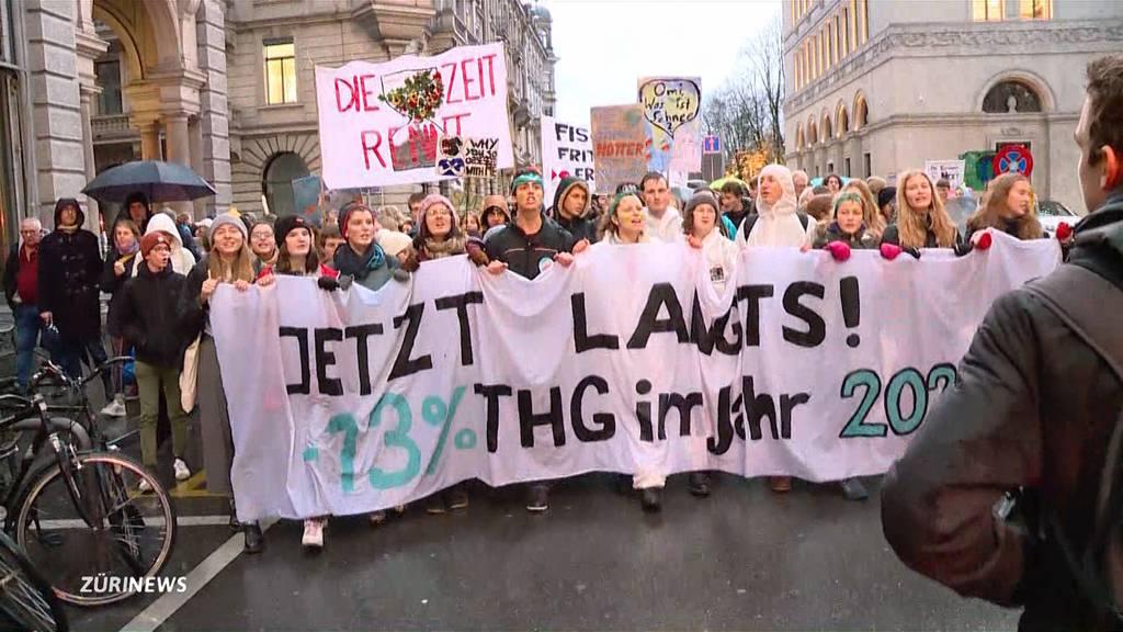 Green Friday: Klimaschützer demonstrieren gegen Konsumwahn