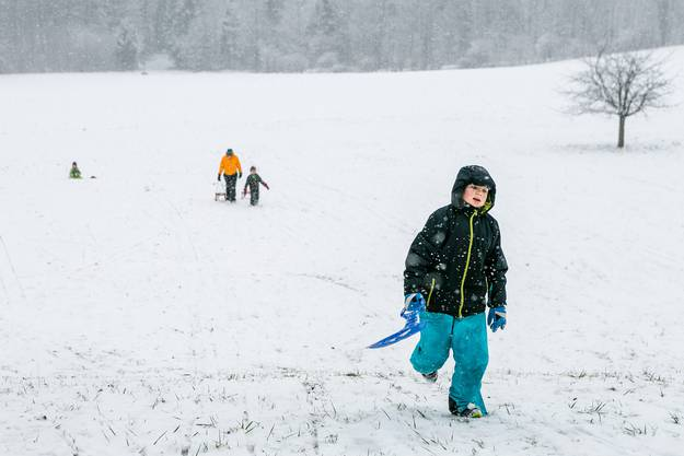 Impressionen vom ersten Schnee auf der Baldegg in Baden. Fotografiert am 10. Januar 2019.