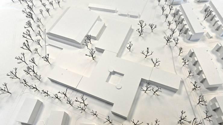 """Neubau Kleinholz-Schulhaus Olten - Siegerprojekt """"windmolen"""""""