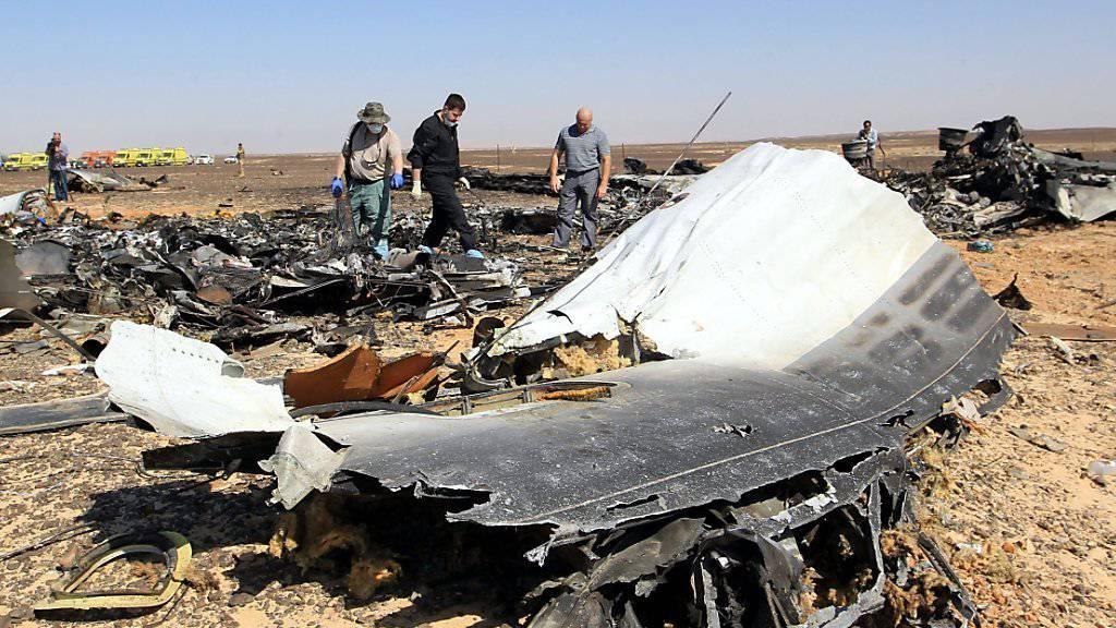Die ägyptischen Behörden untersuchten das Wrack des abgestürzten Passagierjets, fanden aber keine Hinweise auf einen Anschlag.