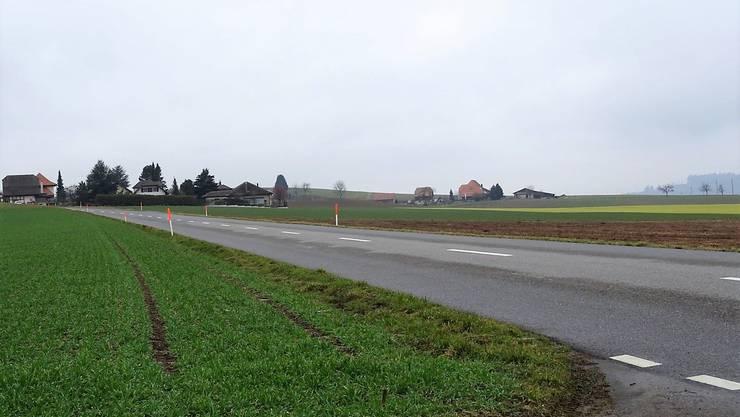 Beim Reusser-Hof (rechts hinten) ist hinter dem Hof ein Schweinemaststall geplant.