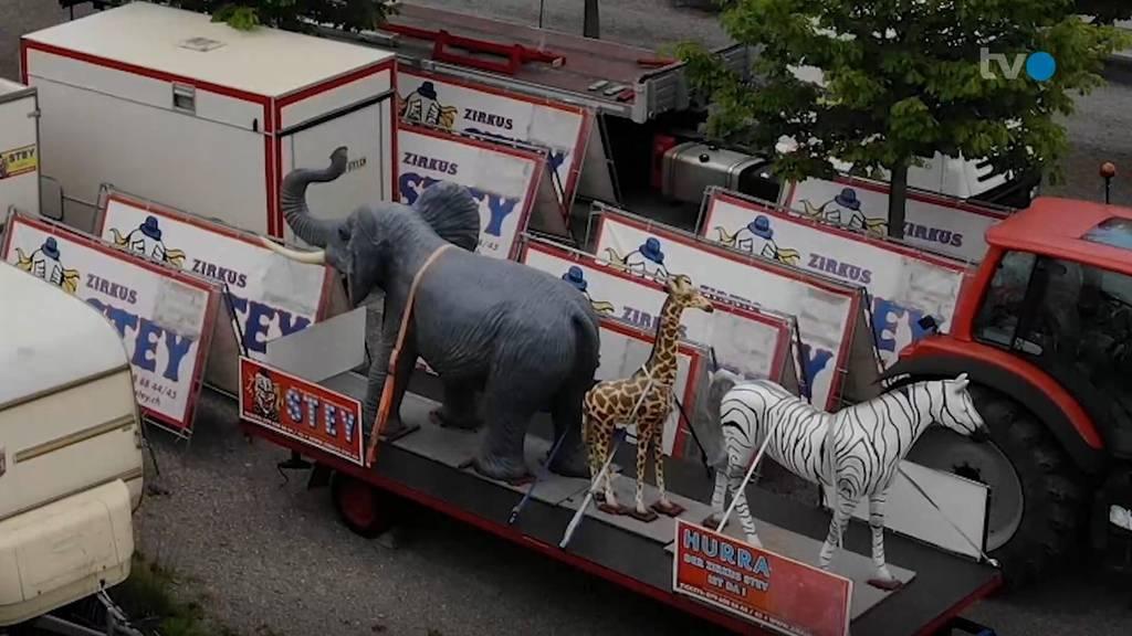 Zirkus bestohlen: Dieb lässt eine Giraffe mitgehen