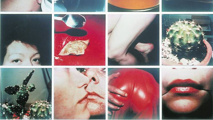Gross, aber ganz nah dran an sich selber: Hannah Villiger, Arbeit (12-teilig), 1980/1981, C-Print ab Polaroidvorlage, 355×475 cm. (Teilansicht, Vollansicht im Text weiter unten)
