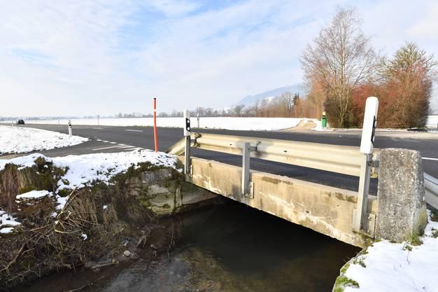 Ein Biber hatte unter der Brücke einen Damm errichtet, welcher insbesondere bei Hochwasser zu einem Problem hätte auswachsen können