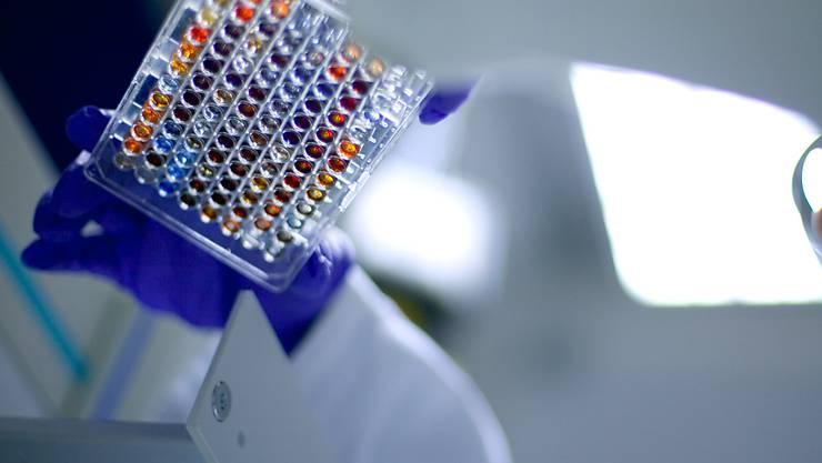 Unternehmen aus dem Bereich Life-Sciences siedeln sich immer häufiger in der Schweiz an und schaffen auch neue Stellen. (Symbolbild)