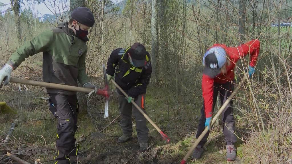 Projekt «there-for-trees»: Klasse pflanzt Bäume gegen den Klimawandel