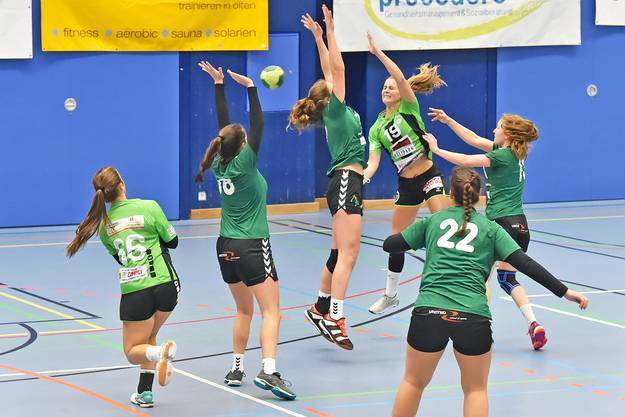 Die Frauen des HV Olten in der Aufstiegssaison 2018/19.