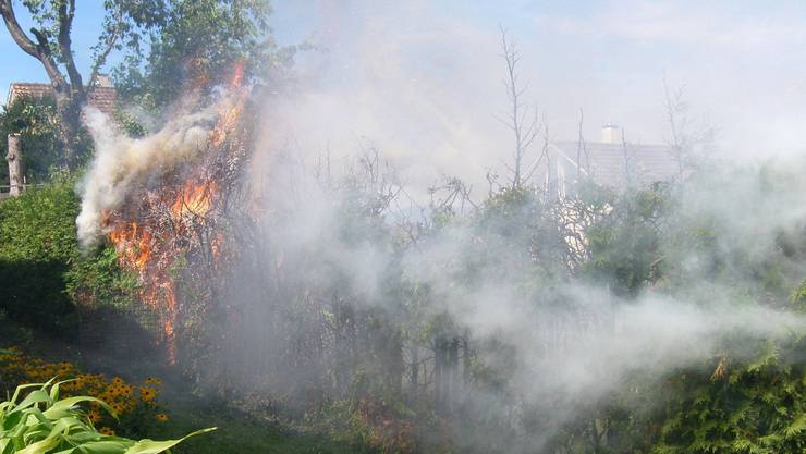 In Allschwil brannte eine Hecke