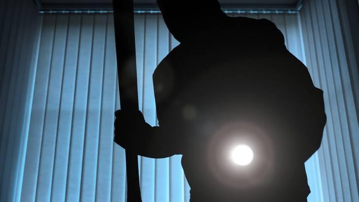 Die Polizei nimmt einen Einbrecher fest. (Symbolbild)