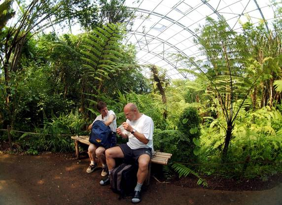 Tropische Masoala-Halle im Zürcher Zoo