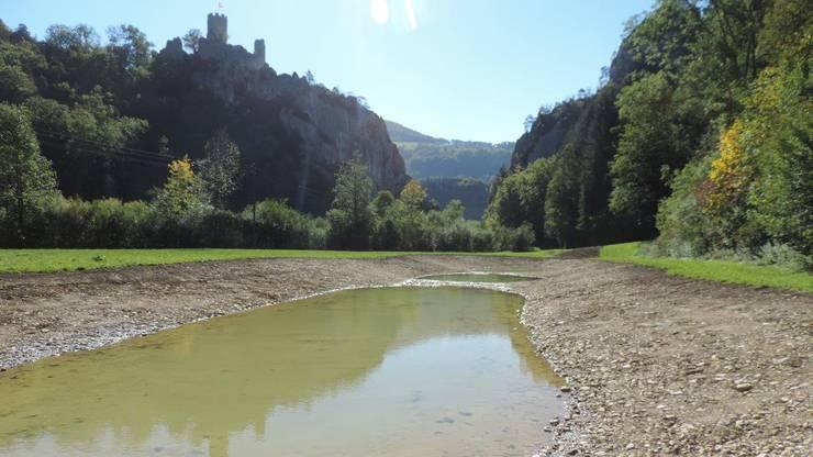Der Lobiseyweiher in Balsthal