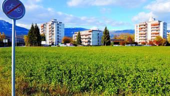 Luterbach ist eine von sieben Gemeinden, die bei der Fusionsstudie mitmachten.