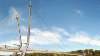 Wasservögel wie Schwäne könnten die Seilkonstruktion, vor allem die dünnen senkrechten Seile, nicht wahrnehmen, sagt Birdlife Aargau.