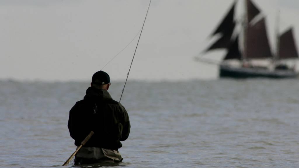 EU-Minister einigen sich auf neue Ostsee-Fischfangquoten