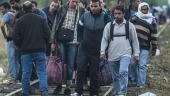 Flüchtlinge an der serbisch-ungarischen Grenze beim ungarischen Grenzort Röszke.