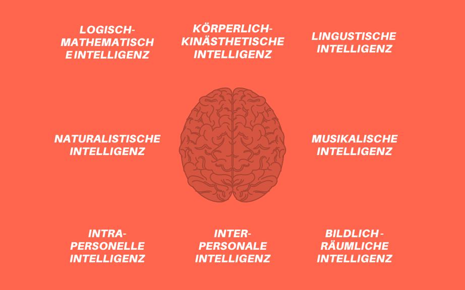 Die Intelligenz-Arten nach H. Gardner