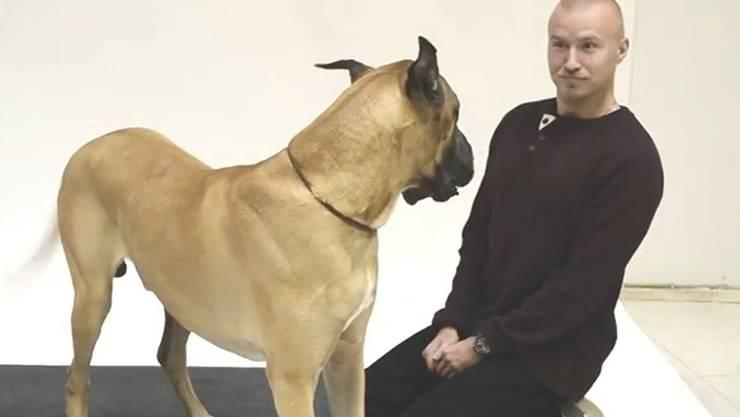 Was hat Komiker Rudi Rok wohl gerade zum Hund Noah gesagt?