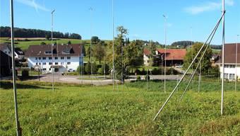 Der Baugespannwald bei der Bushaltestelle Waage in Uezwil.
