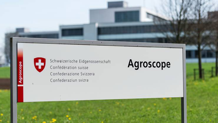 Die Reorganisation von Agroscope ist umstritten. Nun findet der Bundesrat einen Kompromiss, der für einige Standorte dennoch schmerzhaft ist.