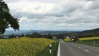 Parallel zur Kantonsstrasse (l.) zwischen Bellikon und Remetschwil (im Hintergrund) ist ein Radweg geplant.