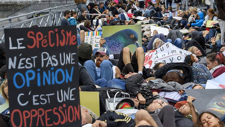 Auf einer Brücke legten sich die Demonstranten auf den Boden, um an die Qualen gefangener Fische zu erinnern.